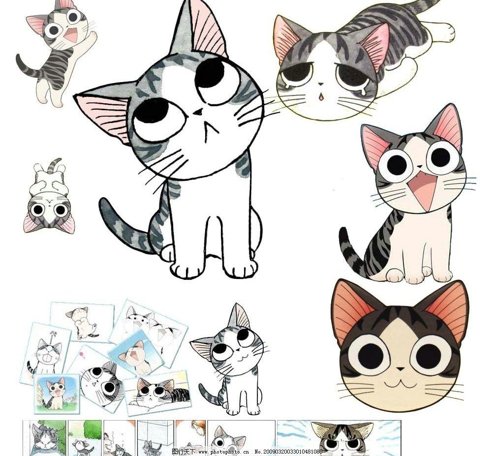 可爱的起司猫图片