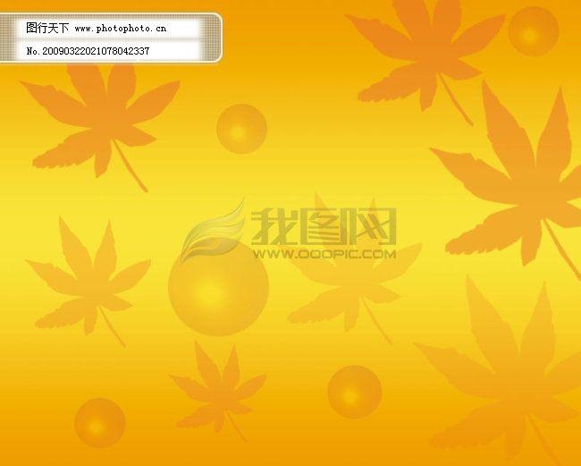 黄叶背景 黄叶背景免费下载 枫叶 黄色 图片素材 底纹边框
