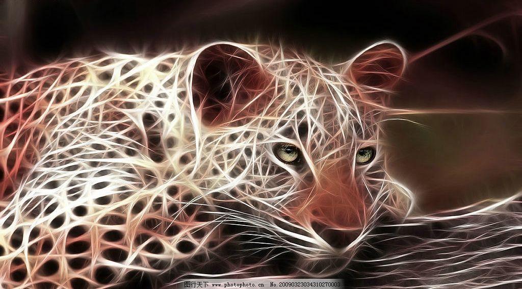 炫彩动物图片 动物 光线 线条 豹子 花豹 金钱豹 野生动物 炫彩 生物