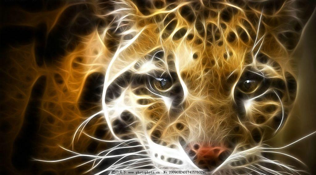 炫彩动物图片 动物 光线 线条 老虎 野生动物 炫彩 生物世界 其他