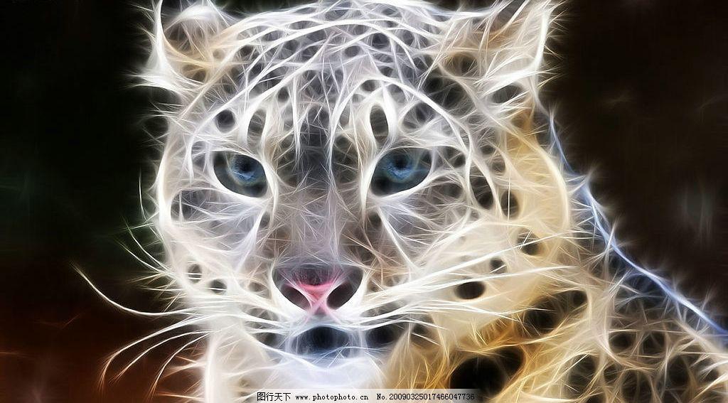 炫彩动物图片 动物 光线 线条 豹子 花豹 野生动物 炫彩 生物世界