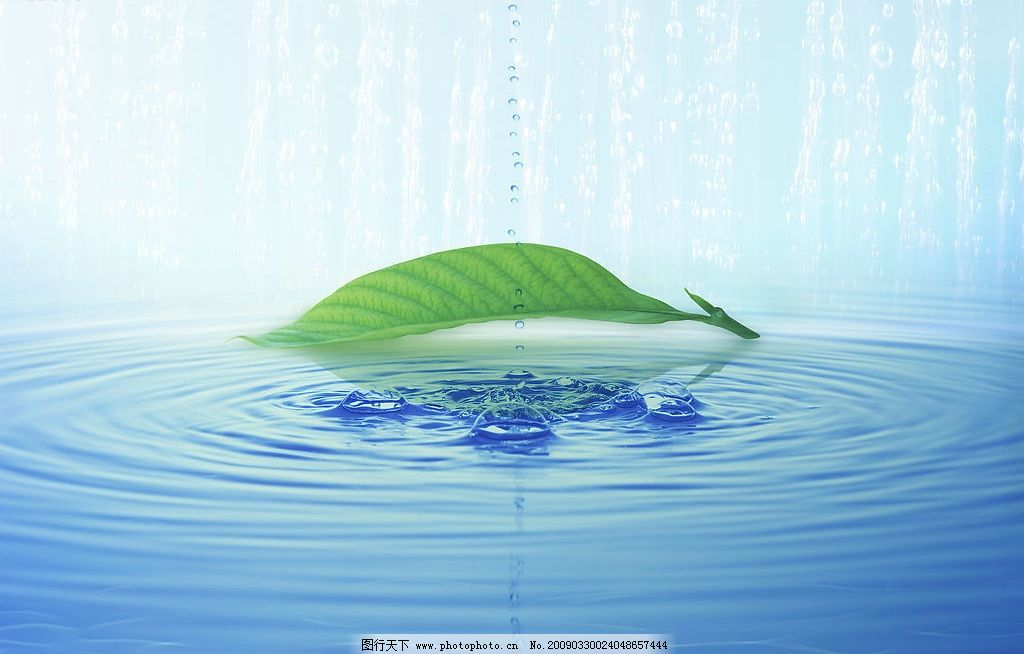 叶子 水滴 水纹 水泡 水图片