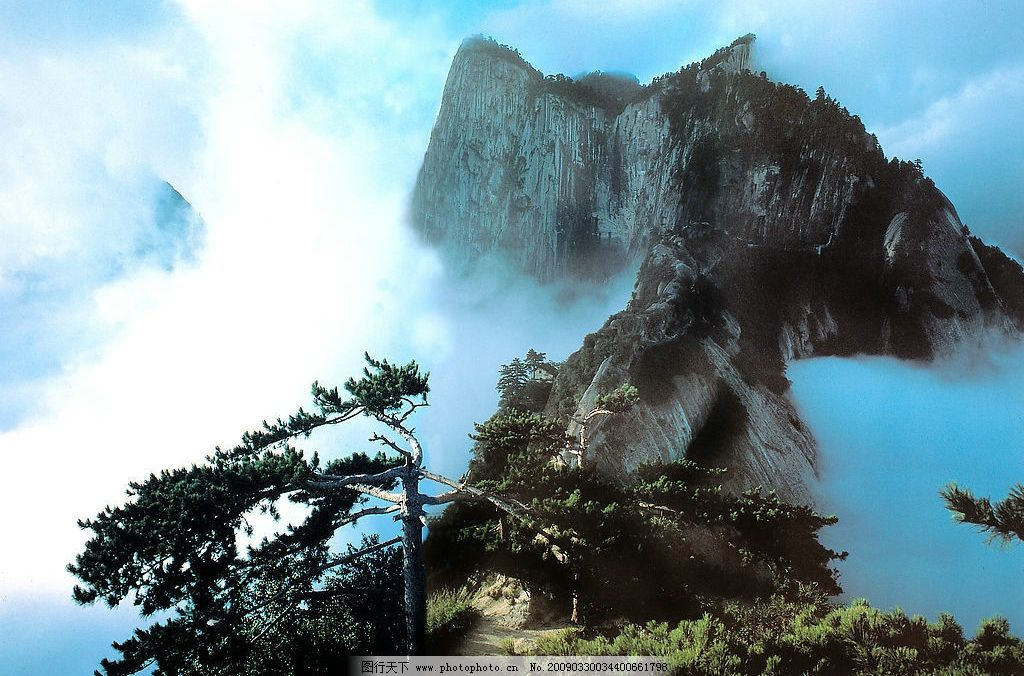 华山风光图片,西北地区 陕西省 雾 松树 旅游摄影-图