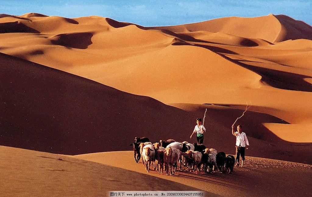 新疆沙漠图片,少数民族 大气 苍劲 大图 装饰画 旅游
