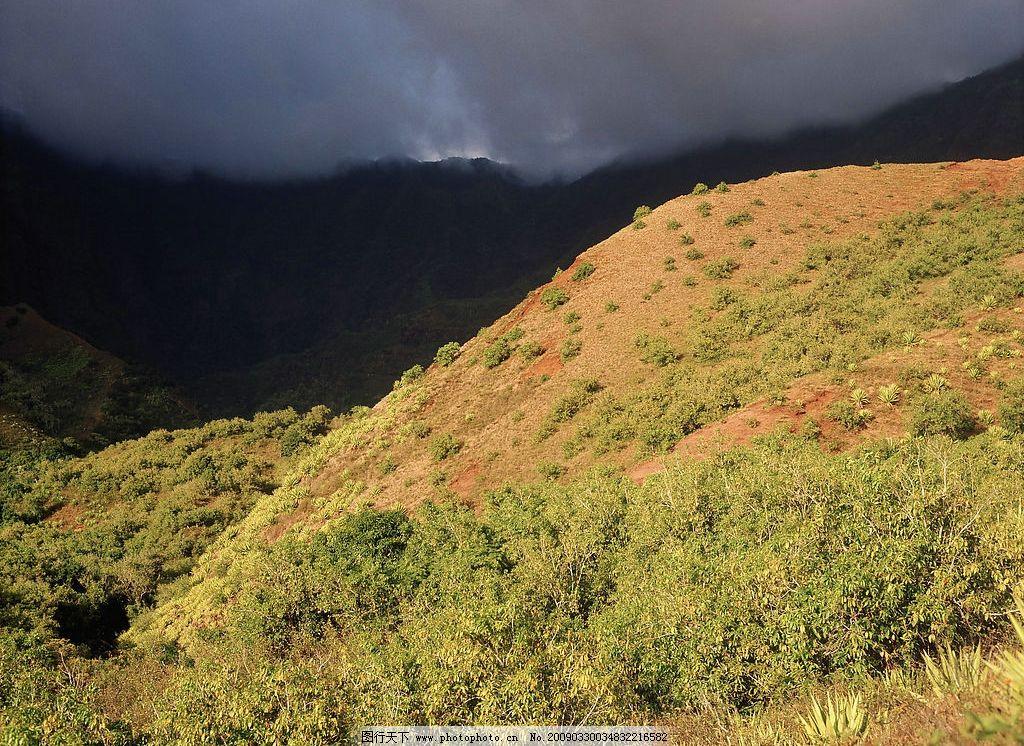 风景 山坡 草 灰天黄云 光 自然景观 自然风景 摄影图库 300dpi jpg