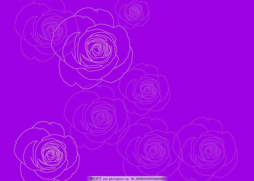 线条玫瑰 矢量 玫瑰 花纹
