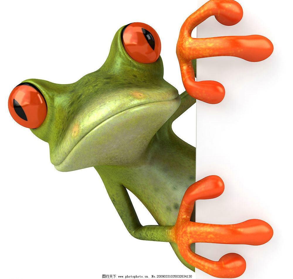 动物世界 动物 青蛙 可爱的青蛙 怪异的青蛙 绿色青蛙 生物世界 野生